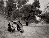 VW-carcass---Rush-Creek-Marsh.jpg