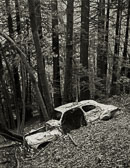 Wrecked-Car_Barbier-City-Park_neg-scan.jpg