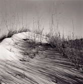 striped-shadows-on-dune.jpg