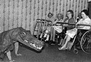 Crocodile_flat.jpg