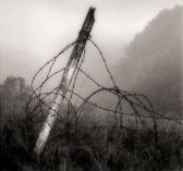 fogpost-2.jpg
