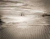 rippled-sand-dune.jpg