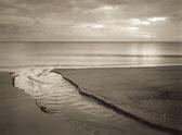 rivulet-into-ocean.jpg