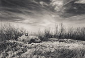 Info----Stillwater-Wildlife-Management-Area_titled.jpg