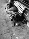 100_sleeping_on_bench.jpg