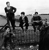 138_gypsies_on_fence.jpg