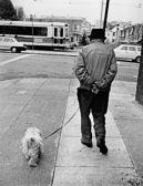 330_Walking_the_dog.jpg