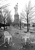 New-YorK_NY_from-back-with-chairs-2_v1.jpg